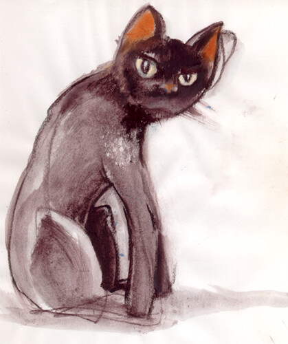 Hi contrast version of the same, Conte sketch of Ozzy the cat. An ever-suspicious creature with insatiable curiosity.