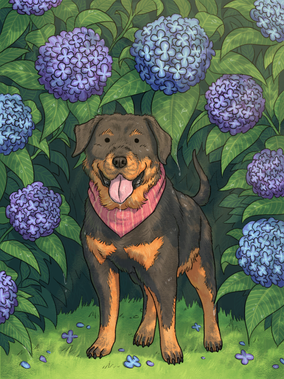Rottweiler & Hydrangea
