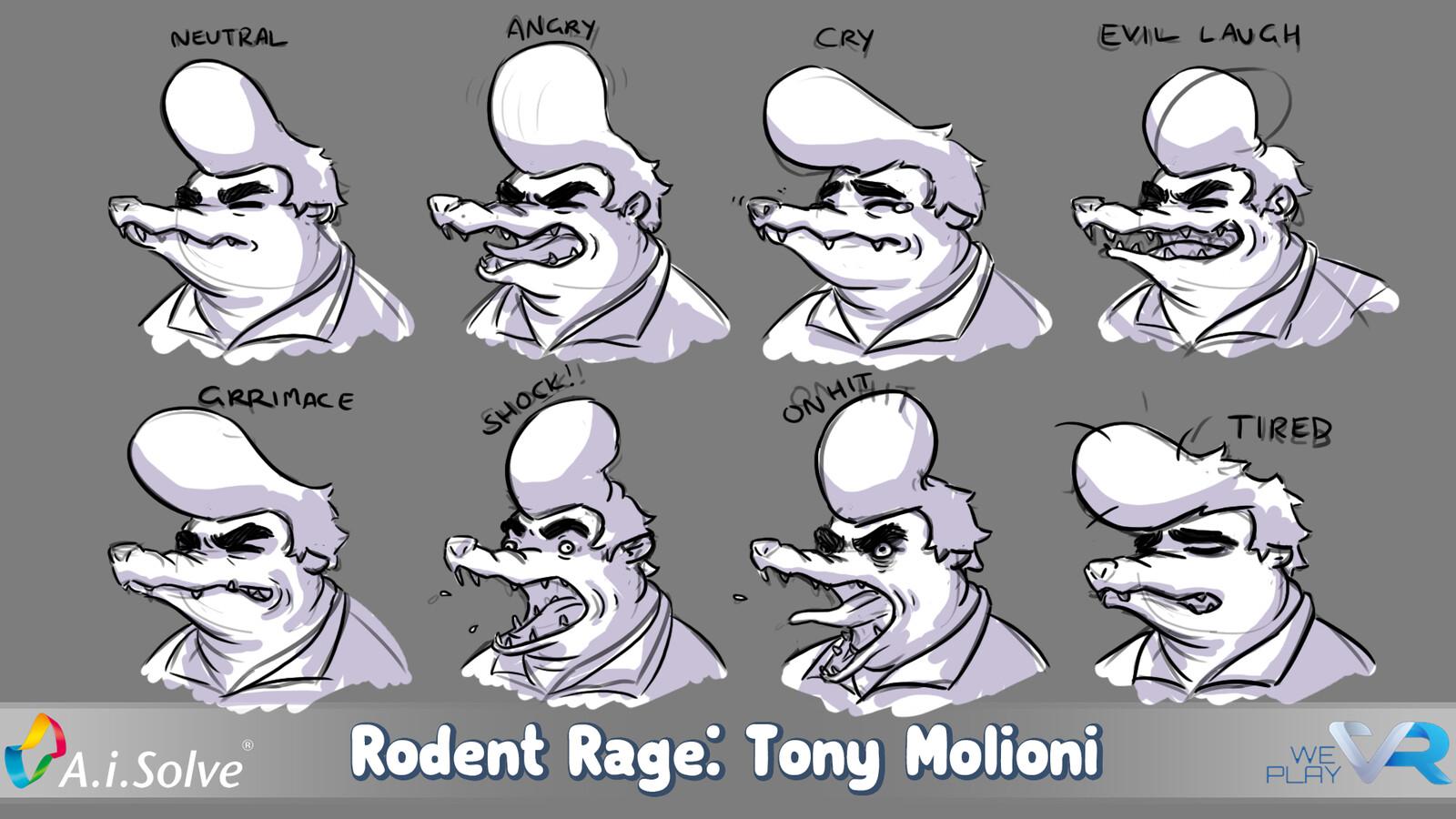 Motion sheet: face