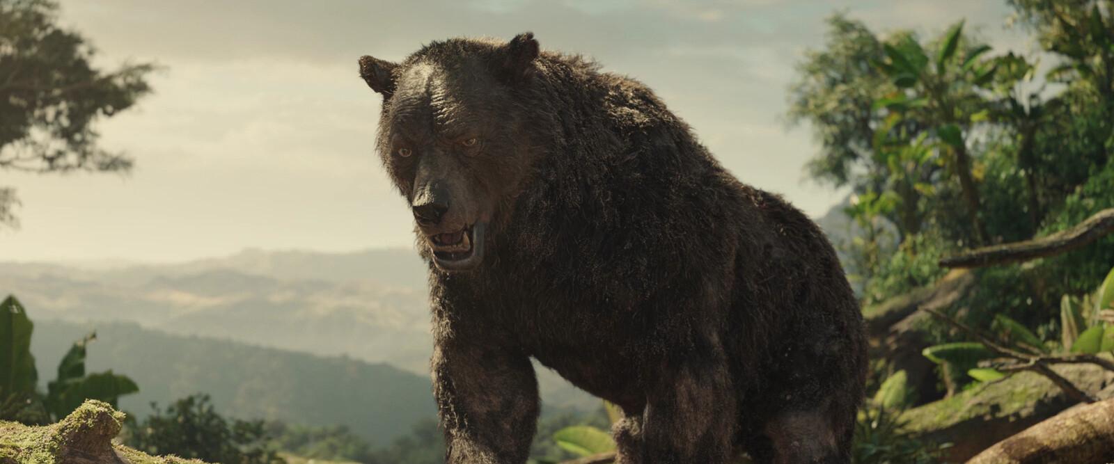 Baloo, full body