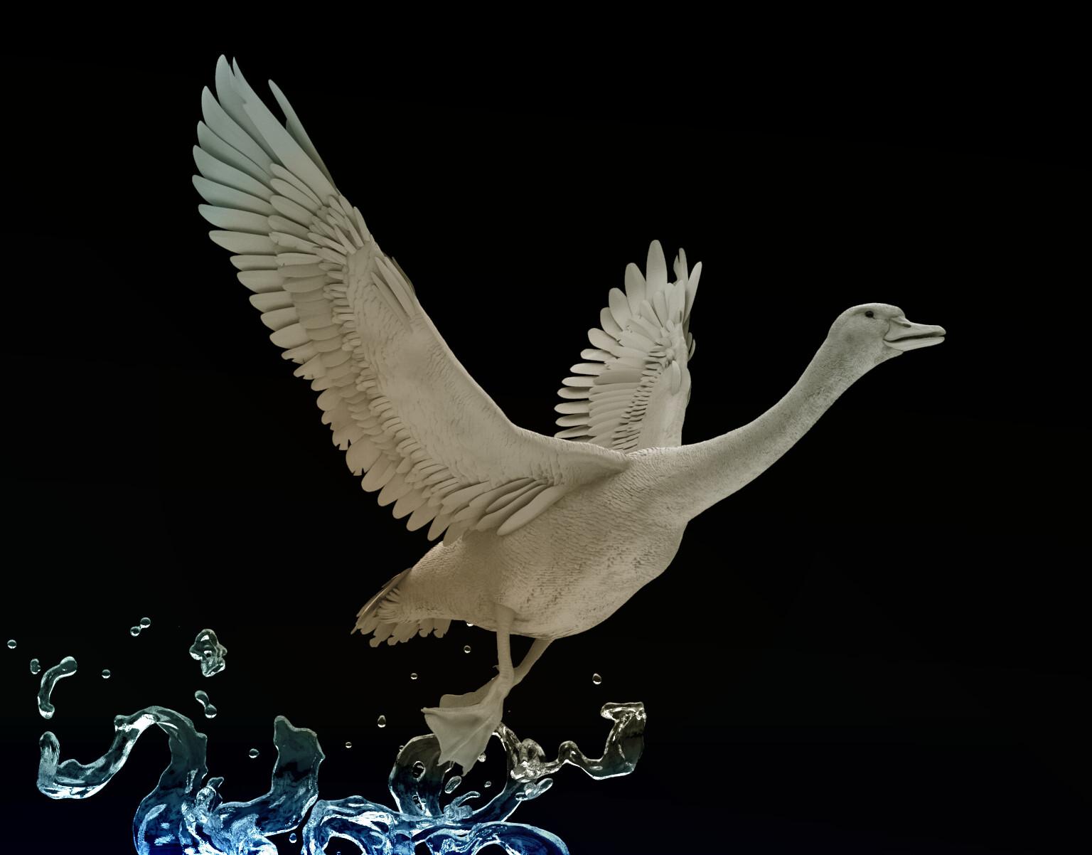 Ada ferran goose plastic b