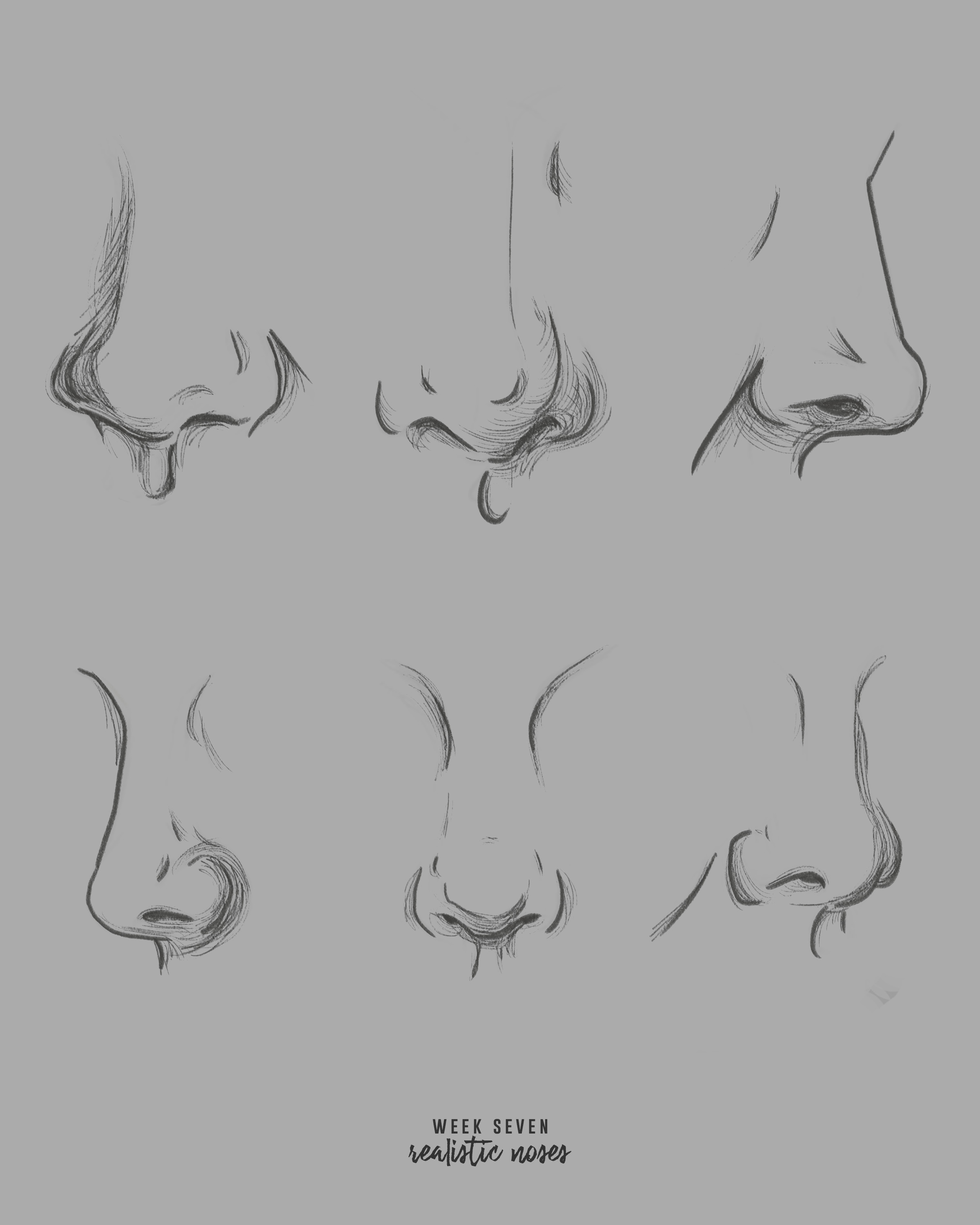 noses