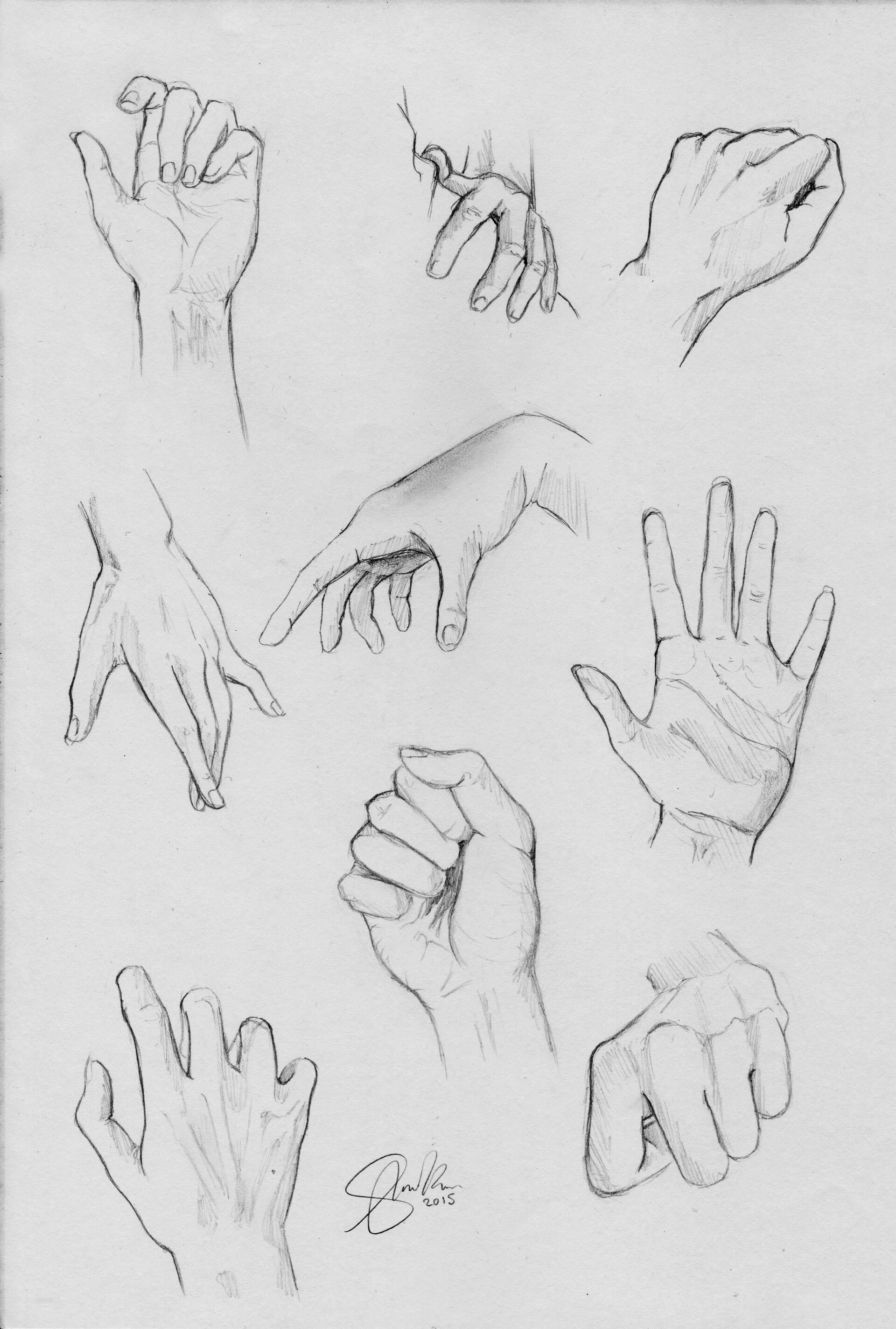 Shellz art hand study