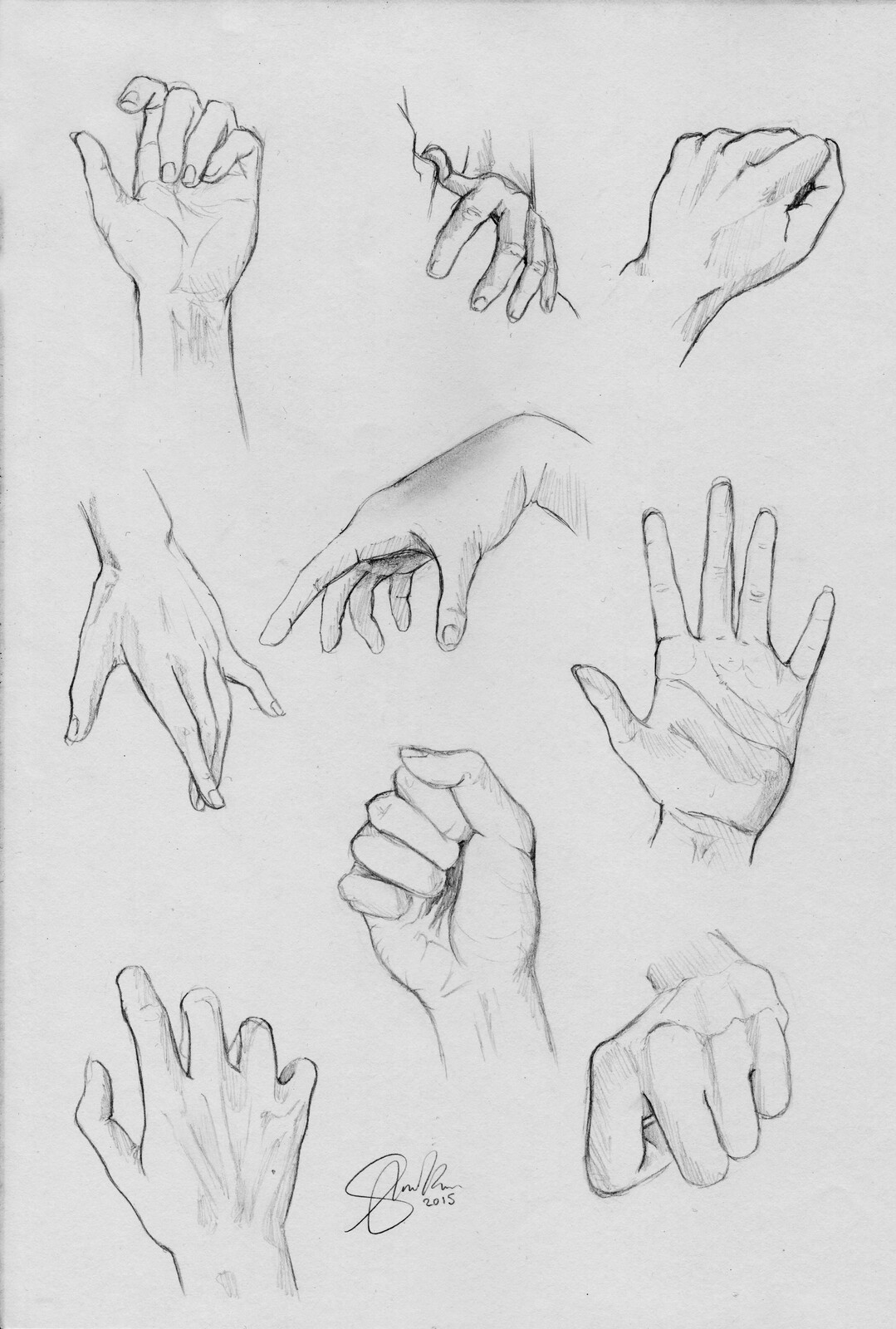Anatomy Study | Hands
