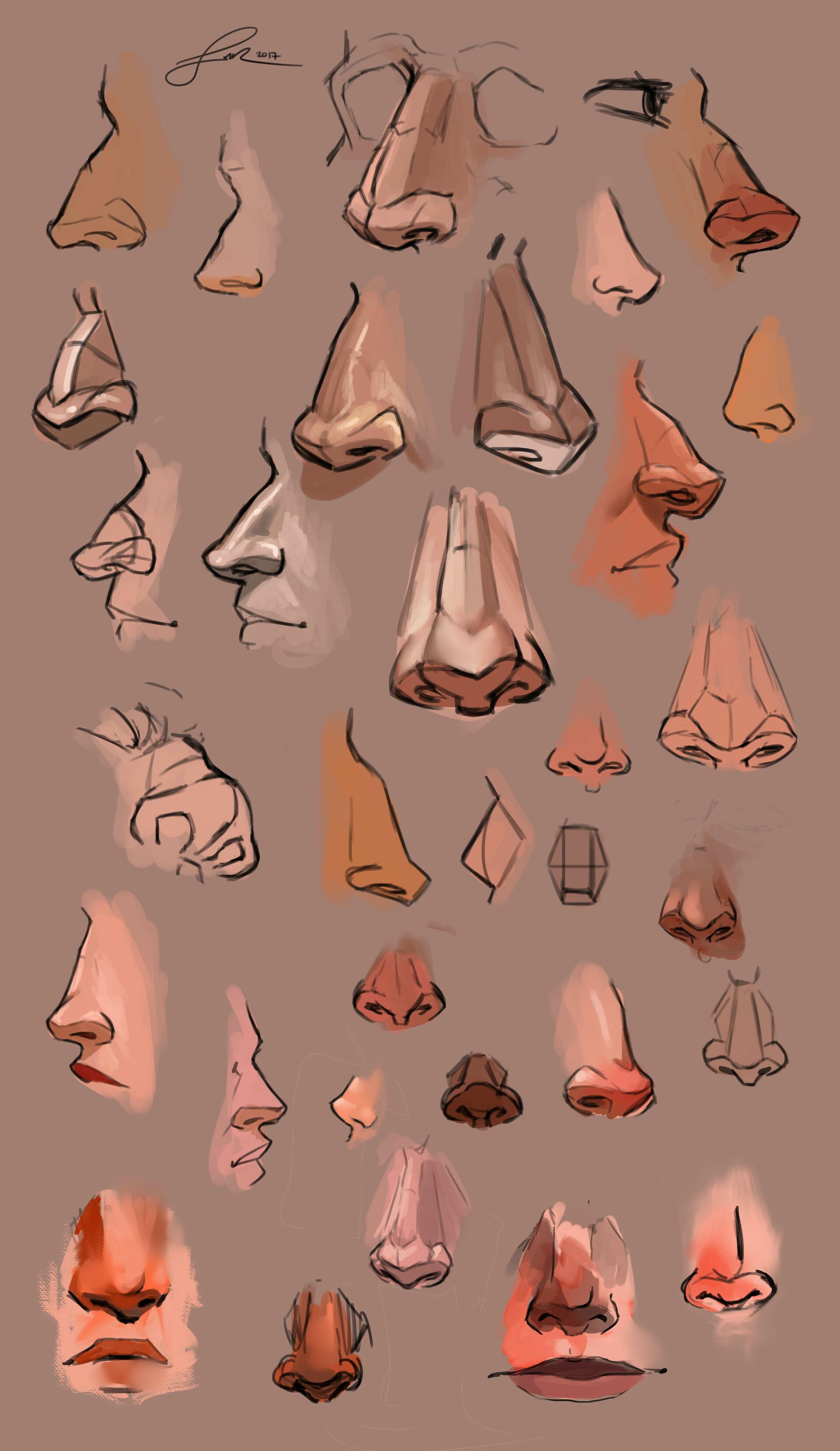 Shellz art study noses