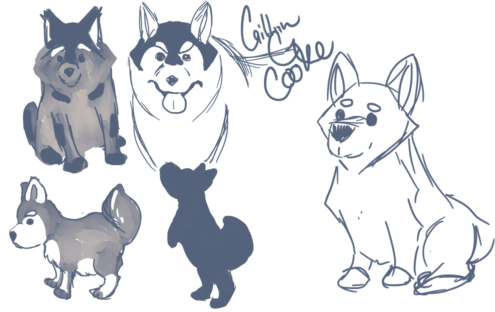 Doodles of Dogs