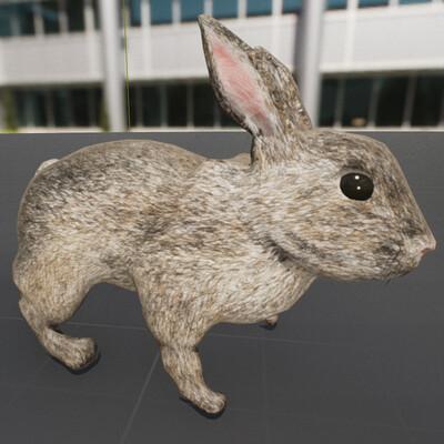 C ross hansen rabbit progress 3 fresnel update