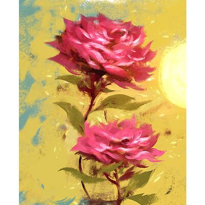 Emrullah cita roses detail