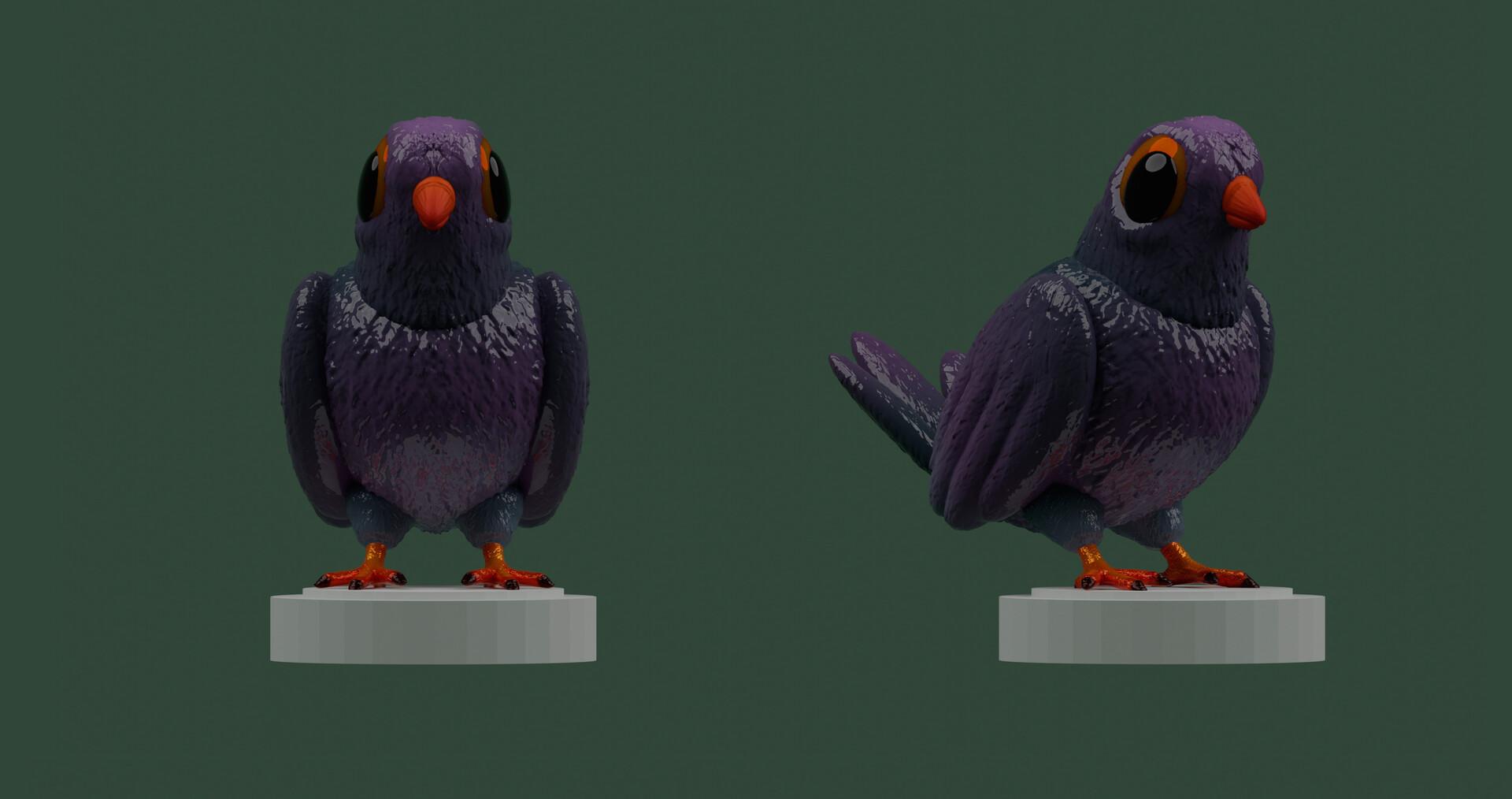 Marcos torres pigeon6