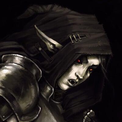 David d m cornish vampire elf rogue v1 01n