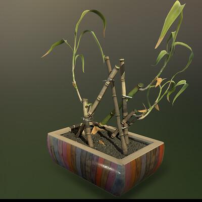 Charlotte clarke plant study render
