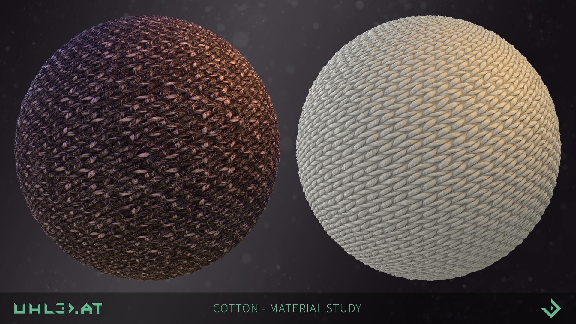 Dominik uhl cotton study 01