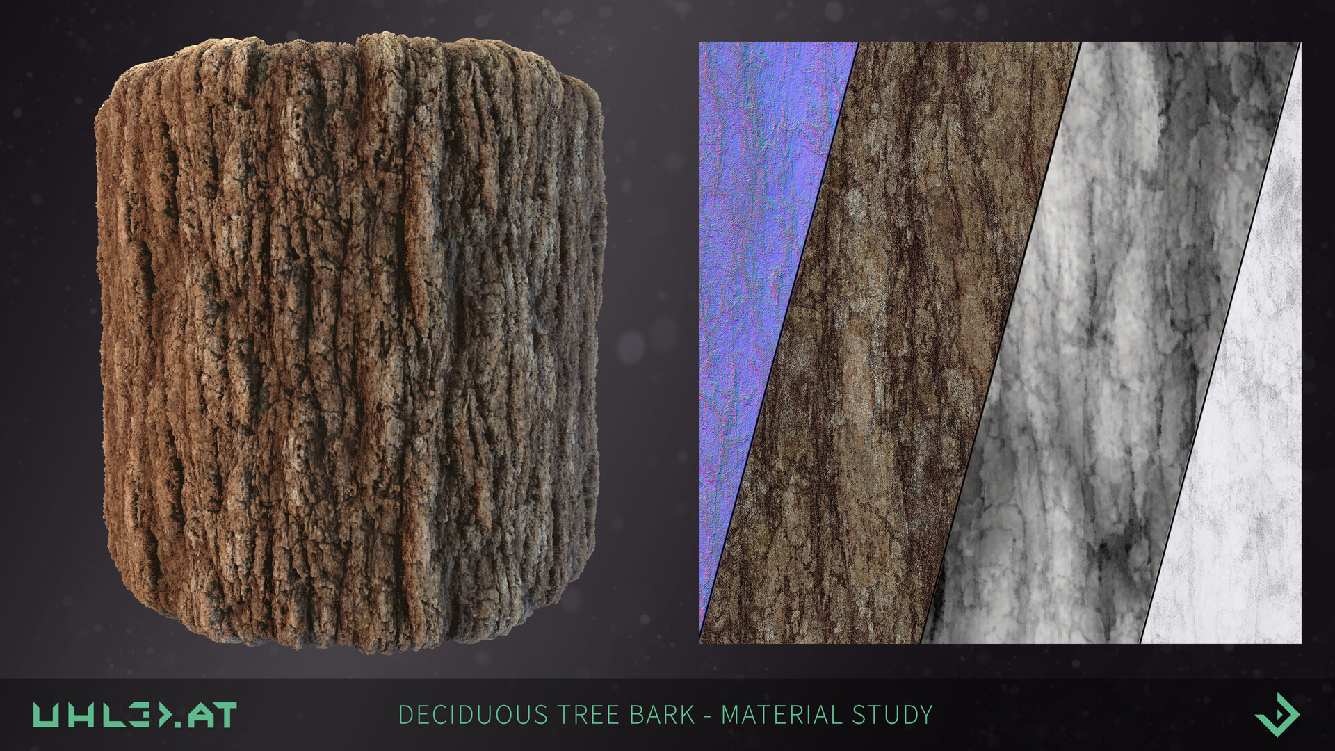 Dominik uhl deciduous tree bark 02