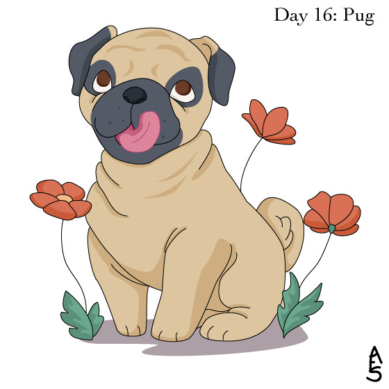 16: Pug