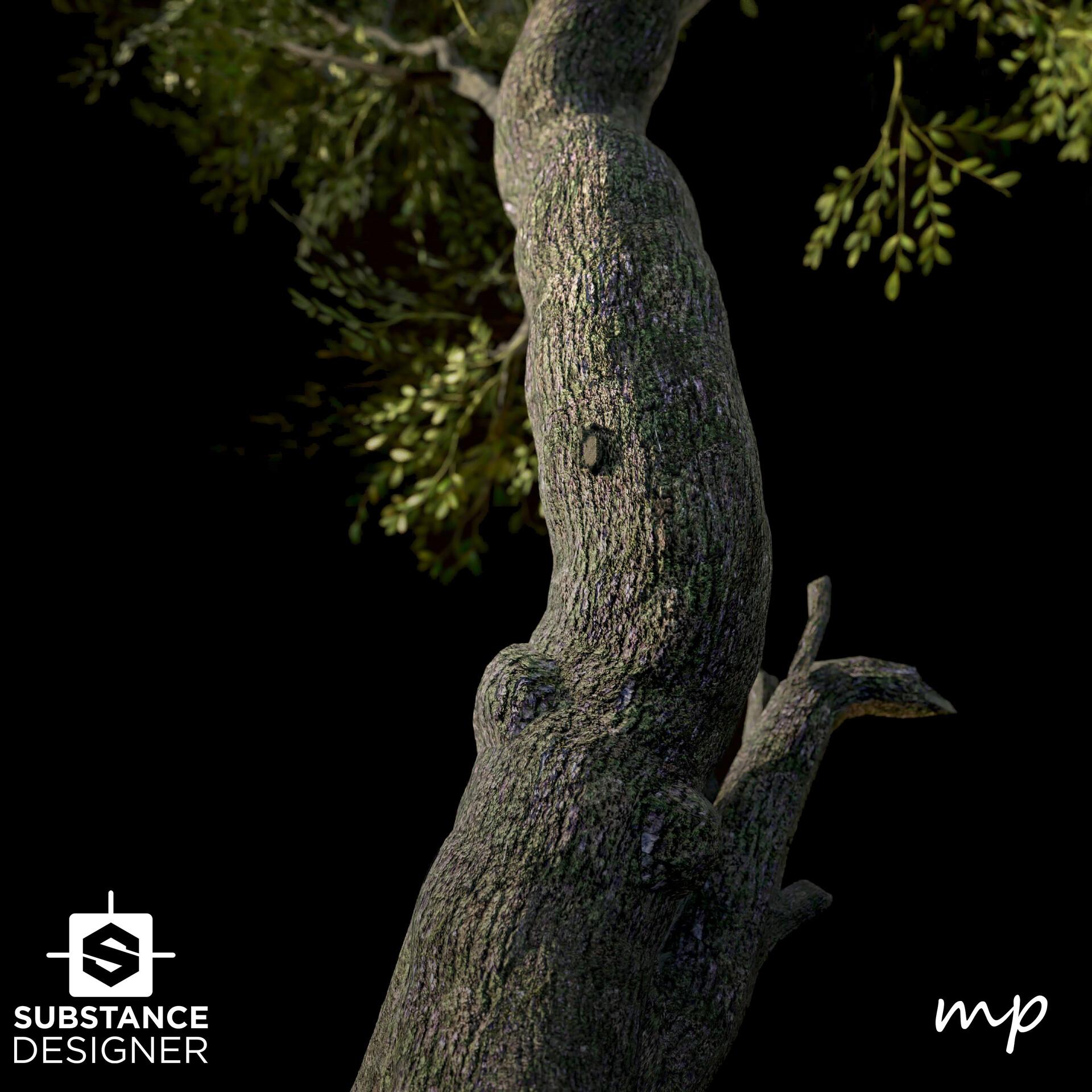 Martin pietras bark moss tree render 01