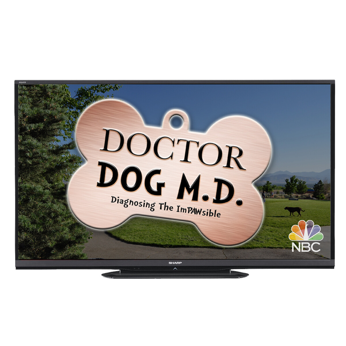 Doctor Dog TV Show Intro Screen
