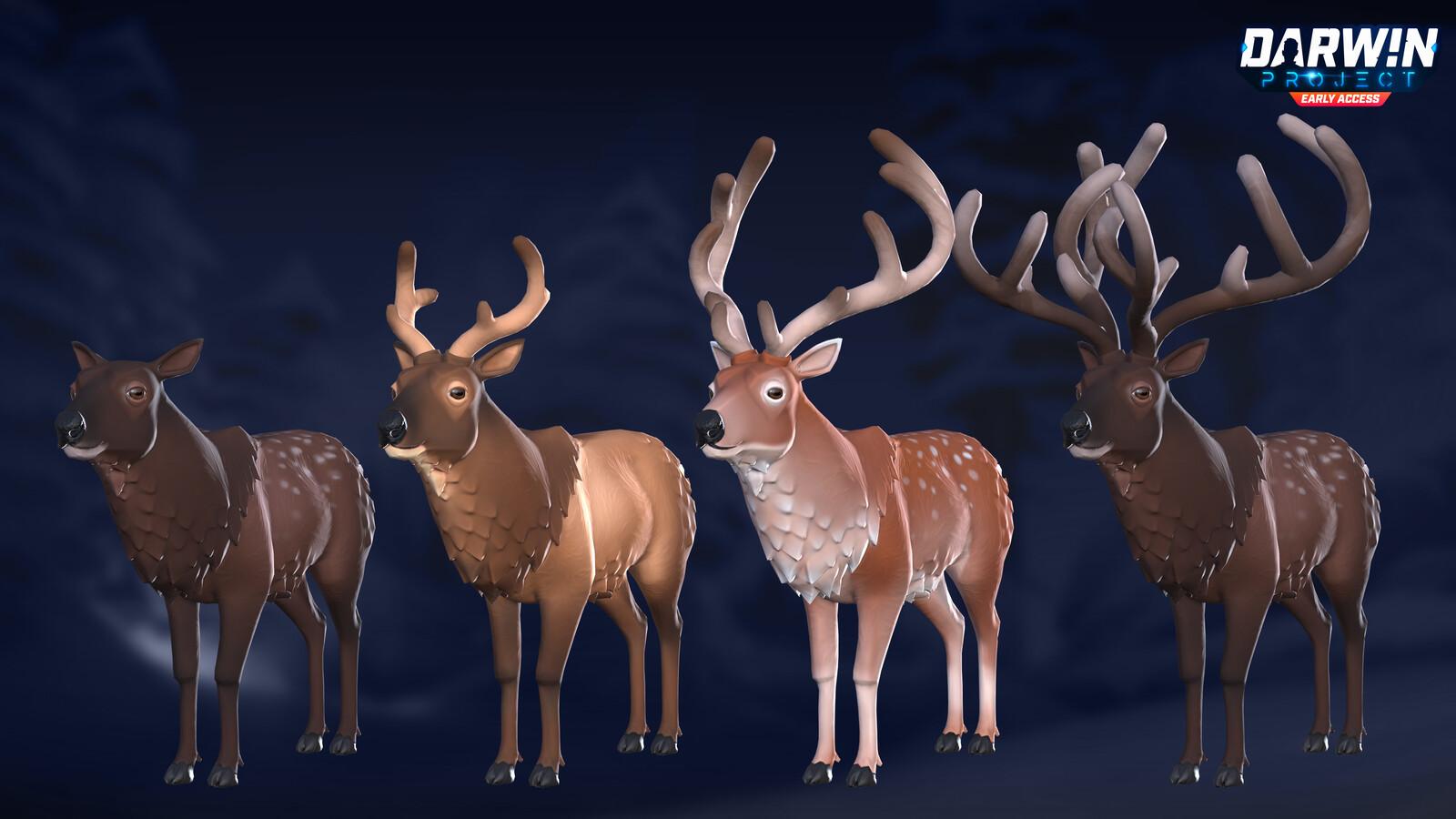 Darwin Project - Deer