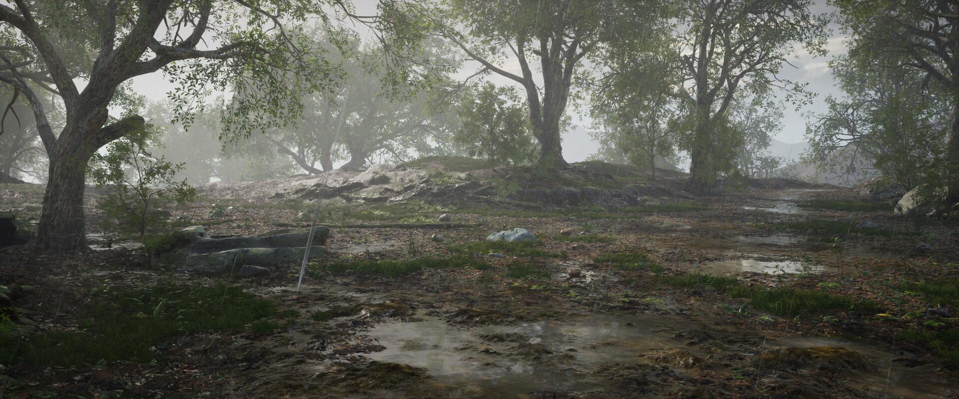B o w qin forest land rain06