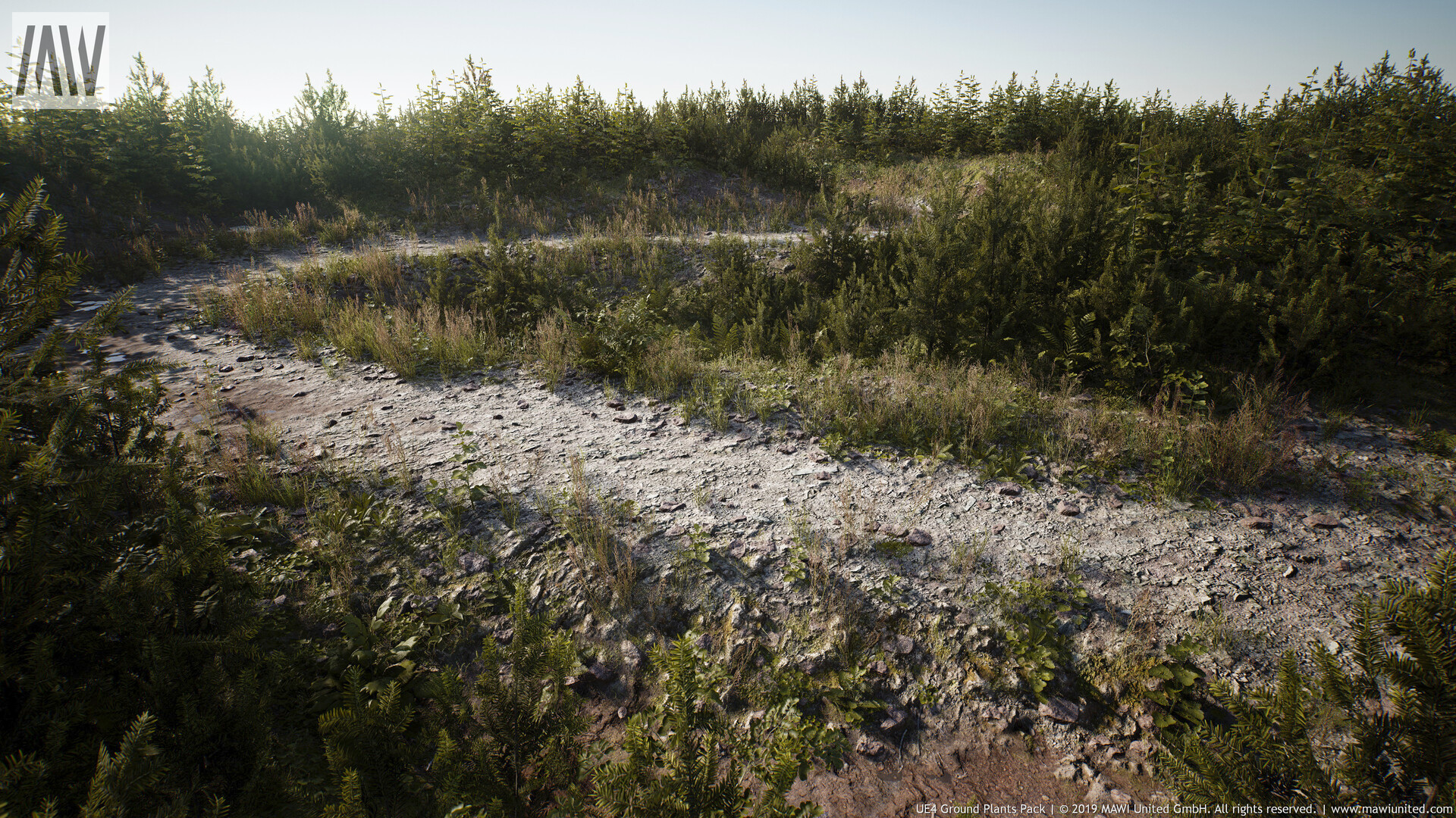 ArtStation - UE4 Ground Plants Pack Update, Willi Hammes
