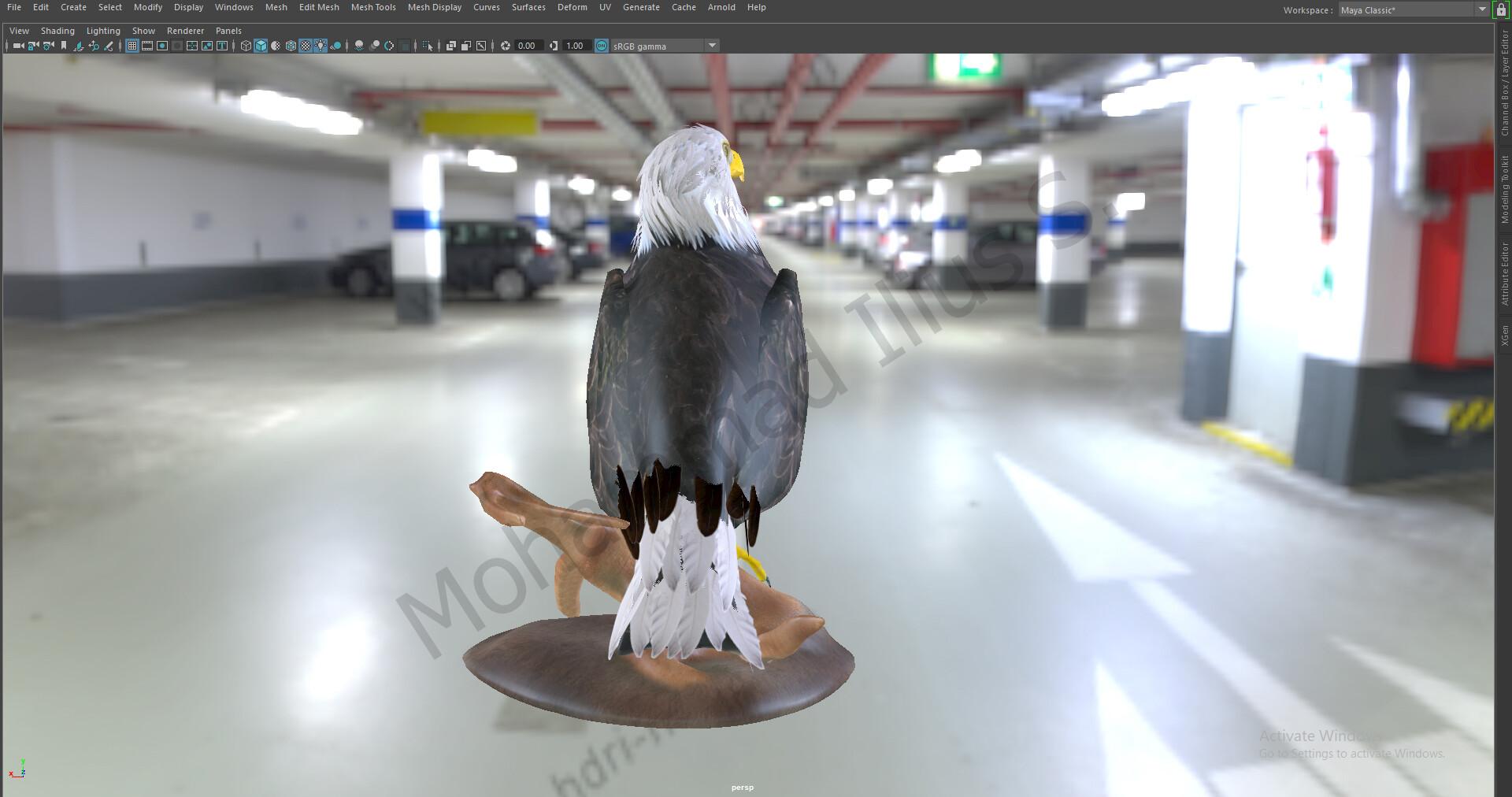 Mohammad Ilius Sagar - 3D Eagle