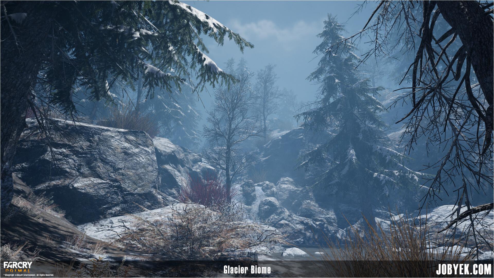Glacier Biome