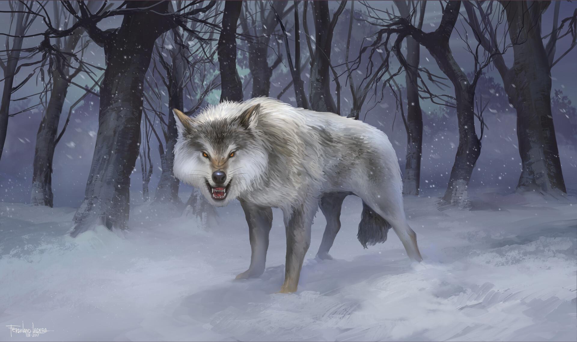 Ferdinand ladera wolf