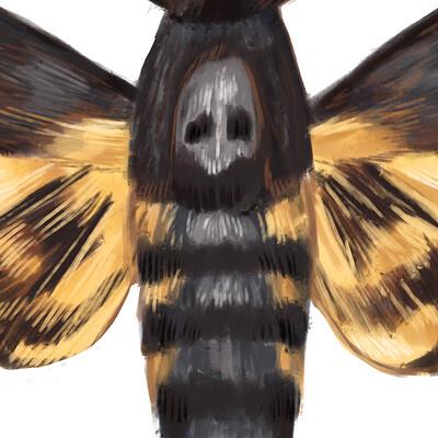 Heather rankin death hex moth
