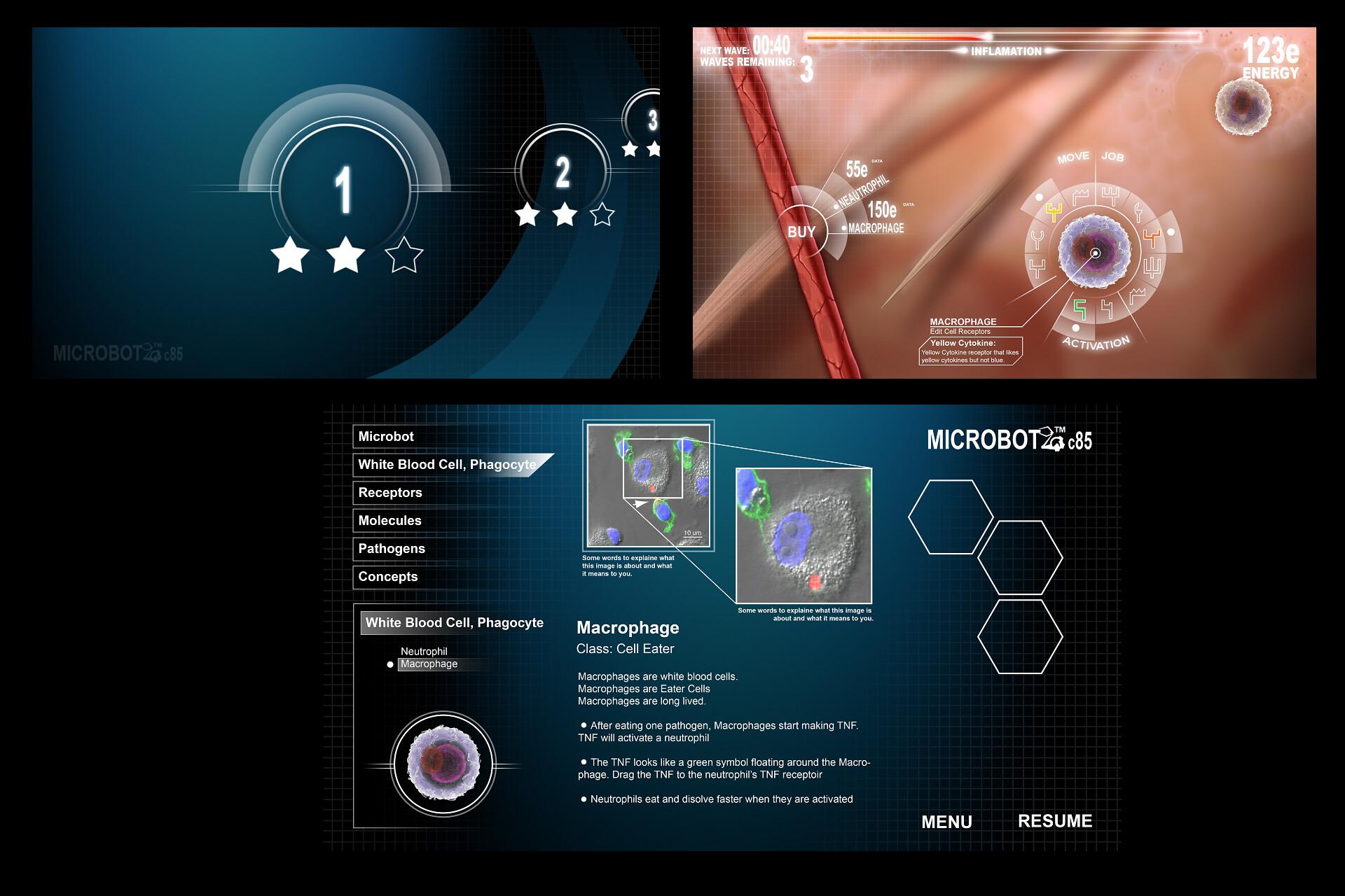 GUI concepts