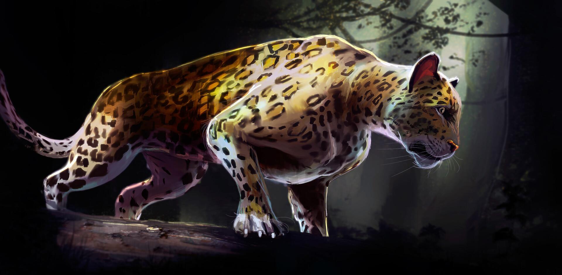 Nicolas chacin nicolaschacin jaguar ver1 0