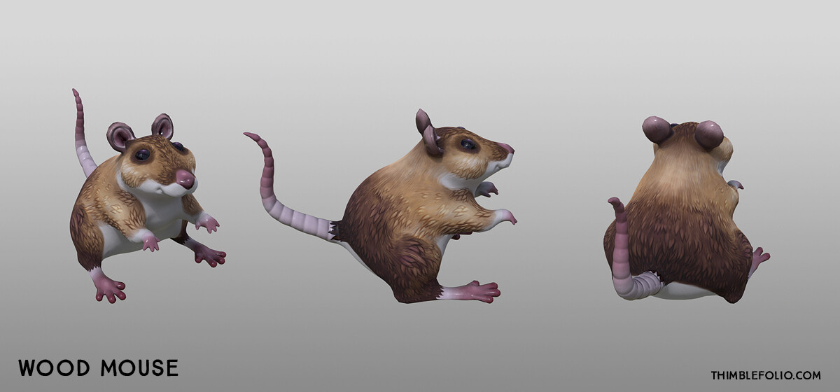 Wood Mouse Turn Arounds