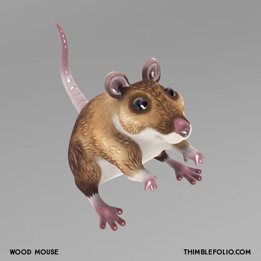 Wood Mouse Render in 3D Coat