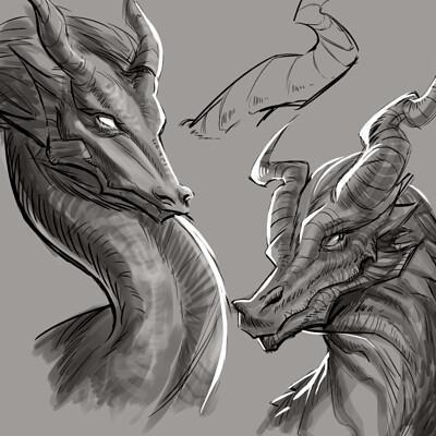Samia rachid dragon hex study