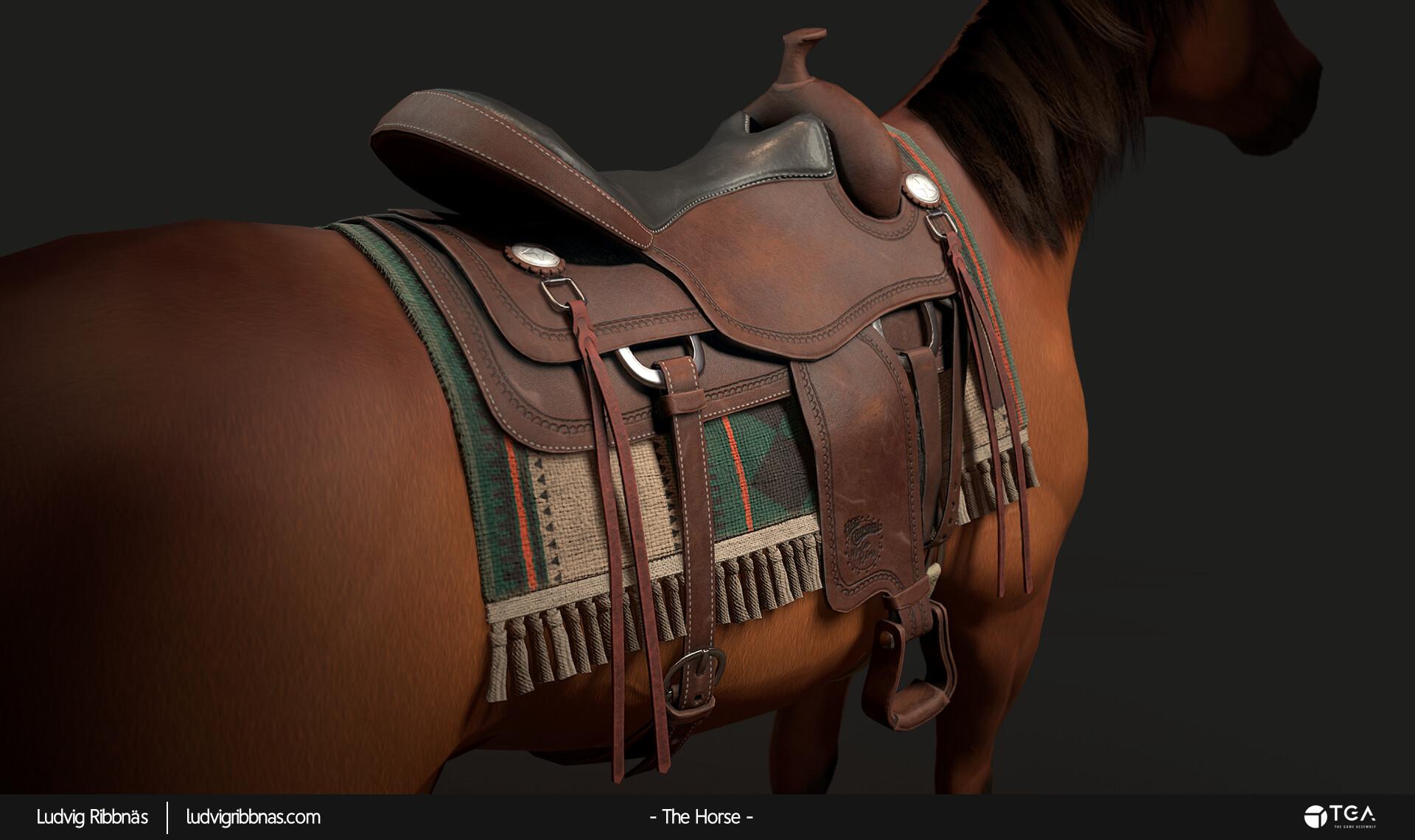 Ludvig ribbnas thehorse saddlecloseupback