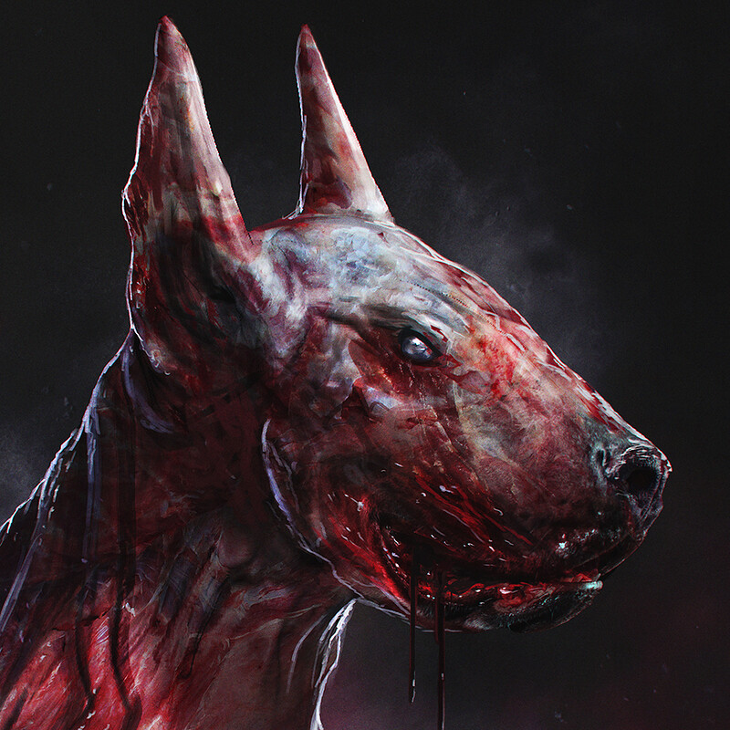 Infected Bull Terrier