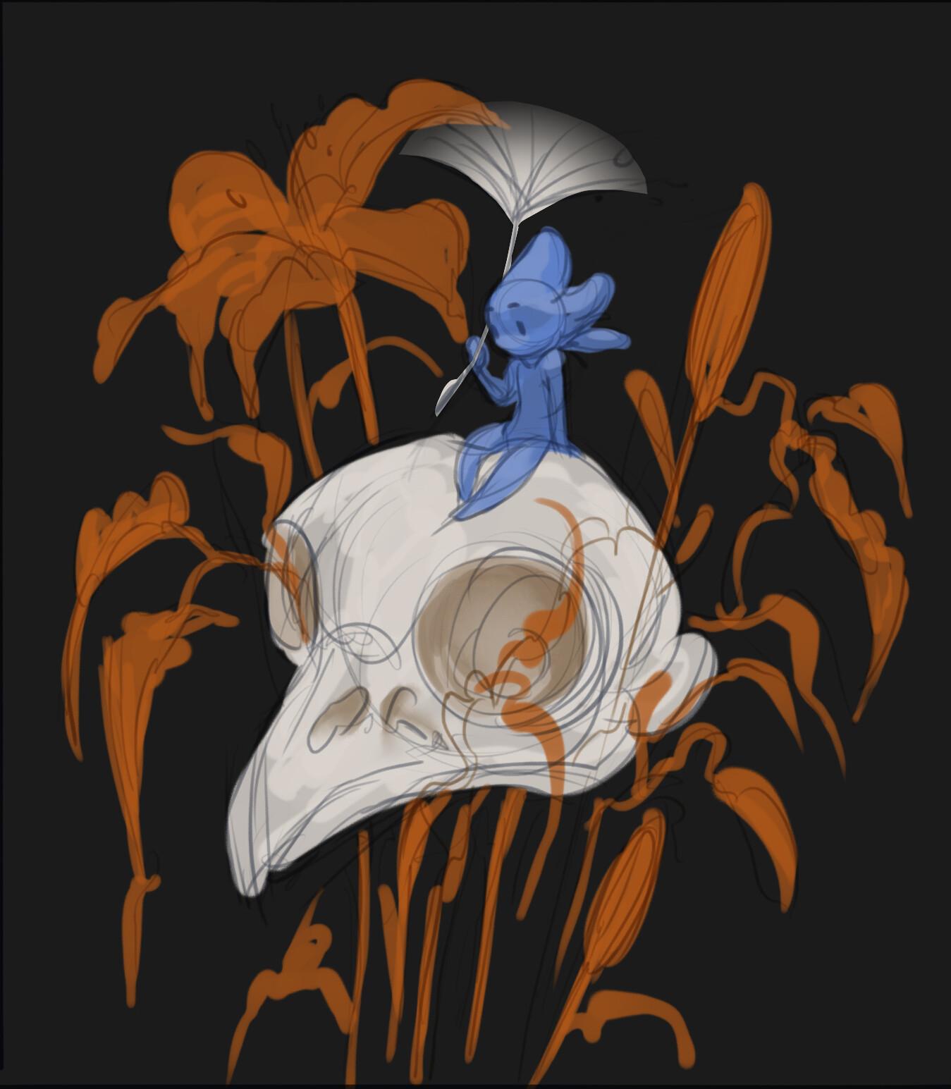 Diana ursu skull sketch