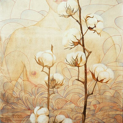 Olga dannik cotton 2