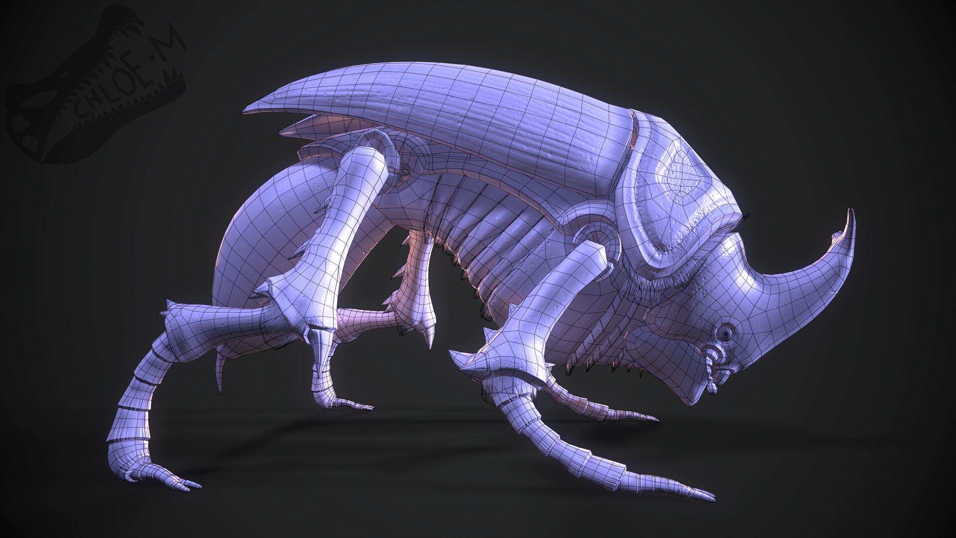 Chloe mccann beetle render wireframe