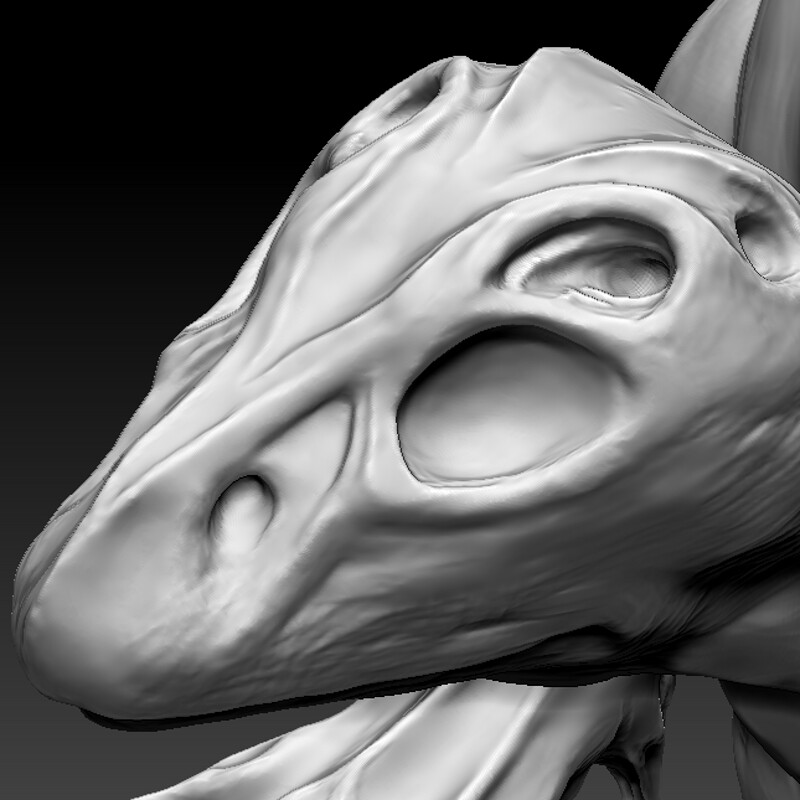 WIP - Skull Crawler concept