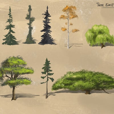 Remy barthes tree sketch