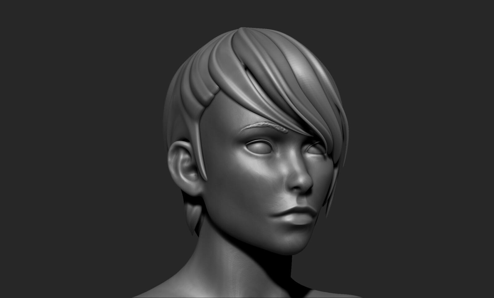 High Poly Sculpt - Head