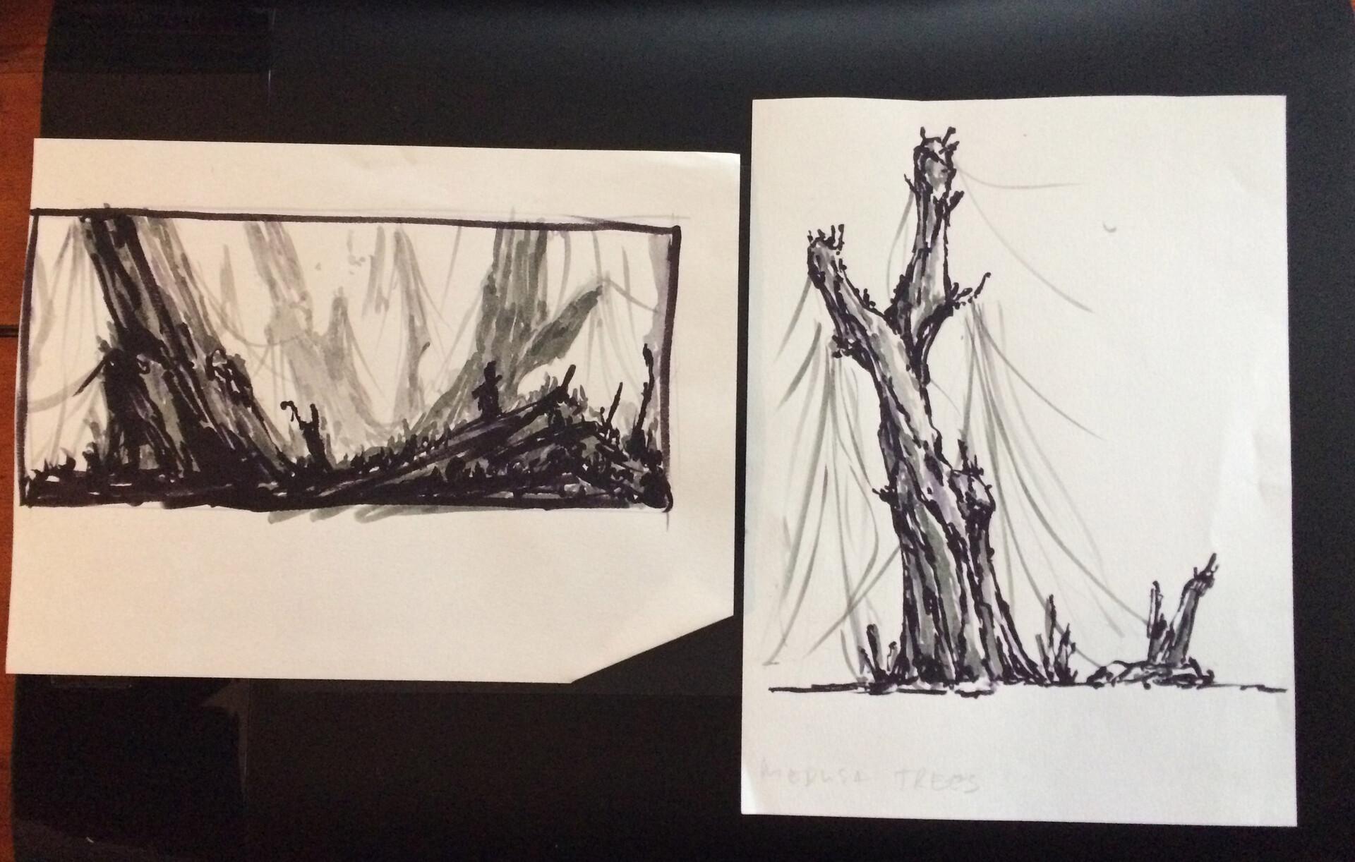 Eva kedves sketch