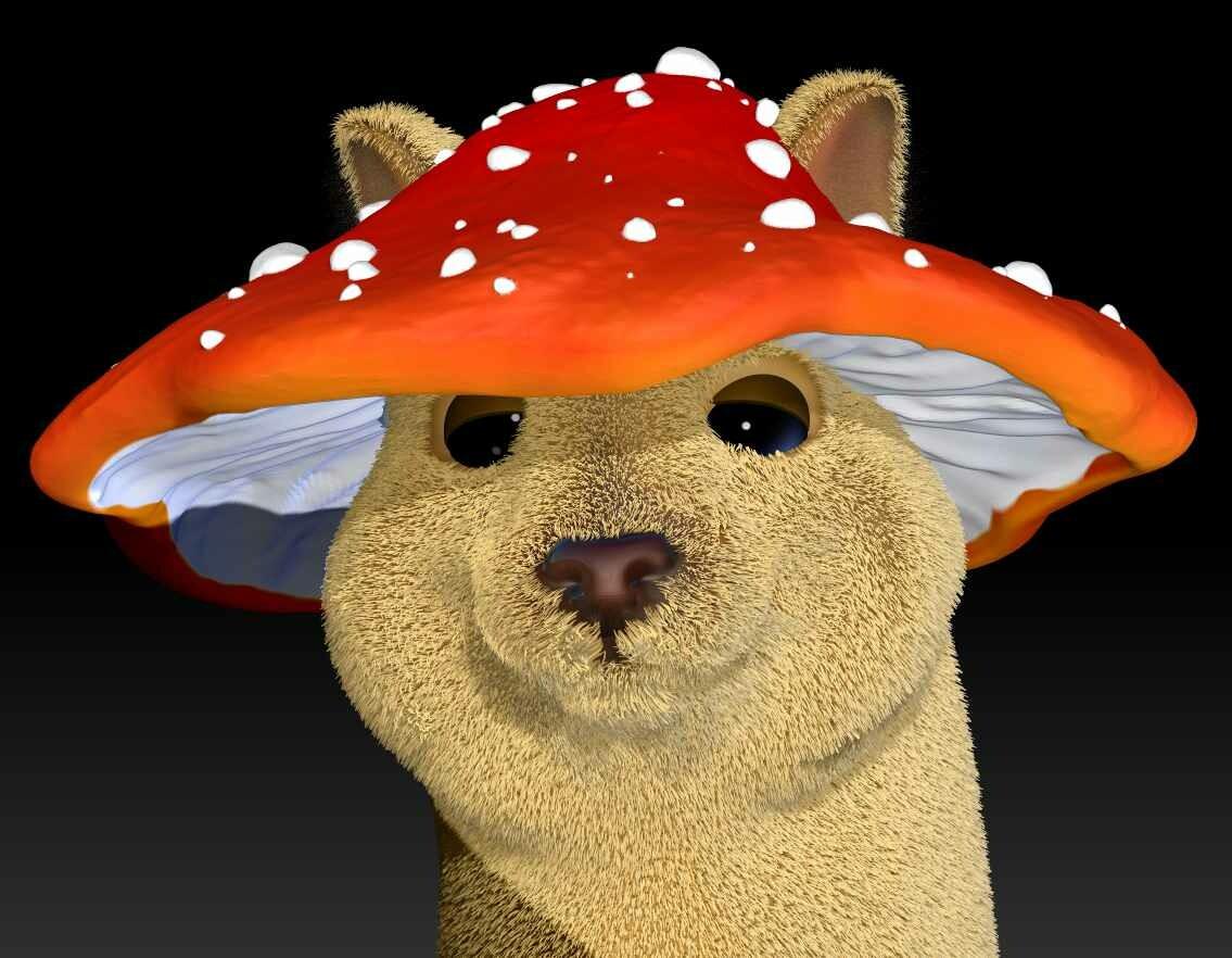 Cute little Mushroom cap
