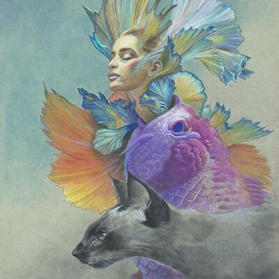 Chris petrocchi cat fish