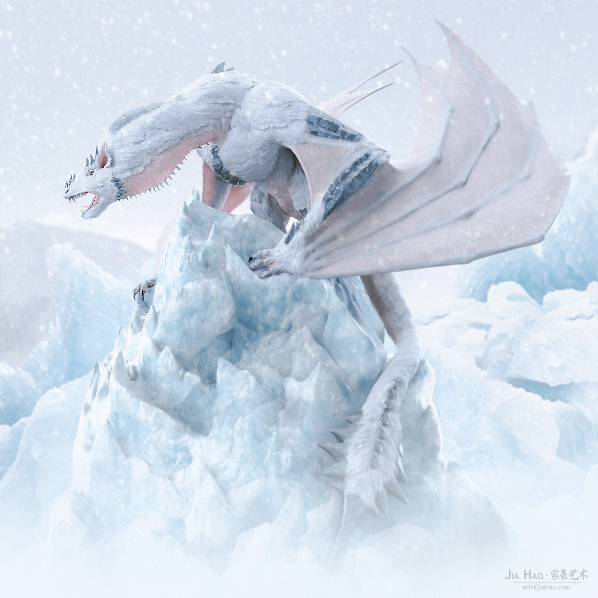 Jia hao 2018 snowdragon comp 01