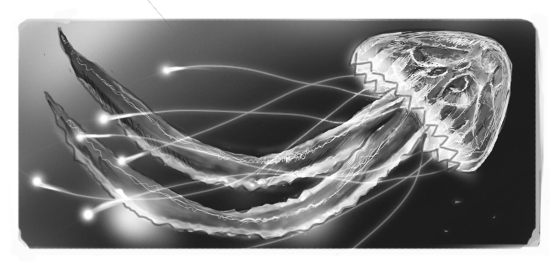 Fatih gurdal jfish