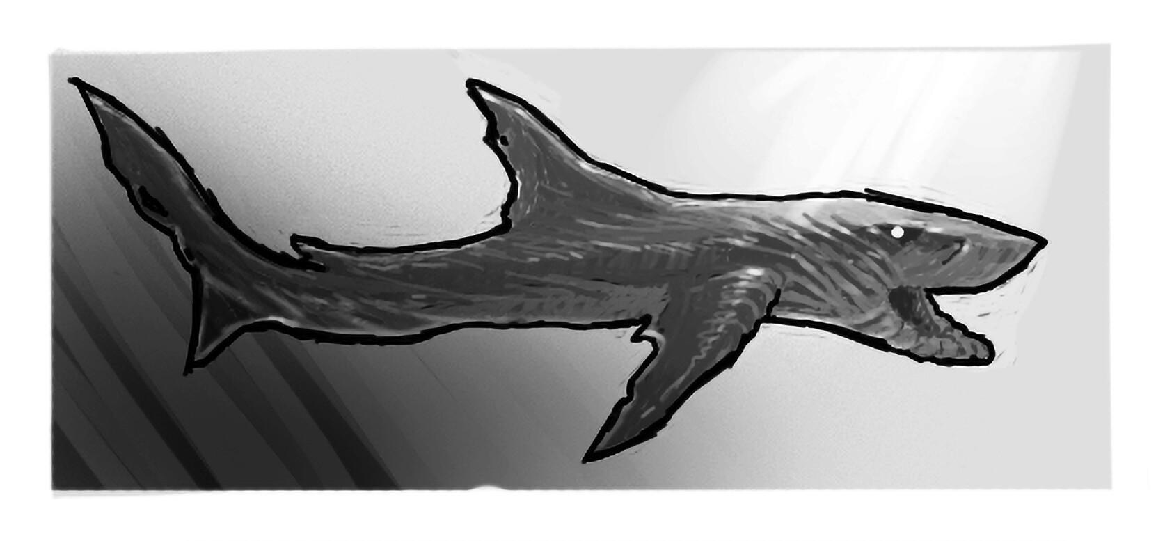 Fatih gurdal shark2