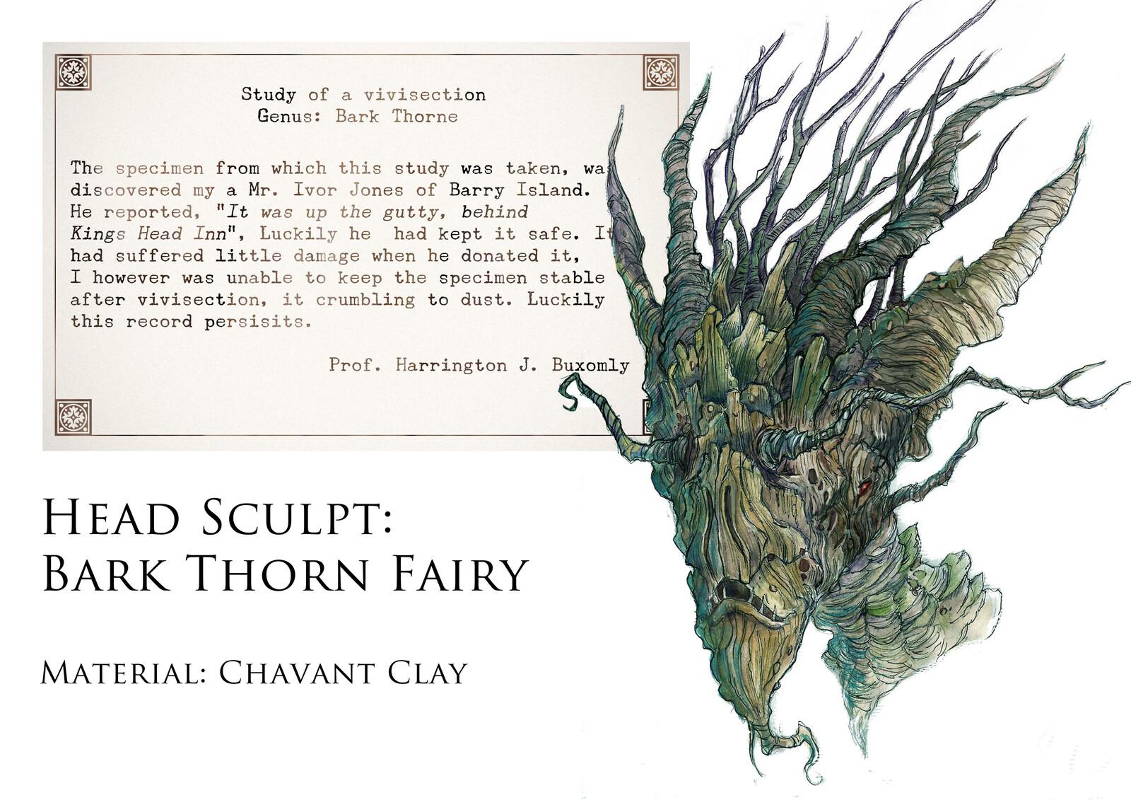 Bark Thorn fairy head study