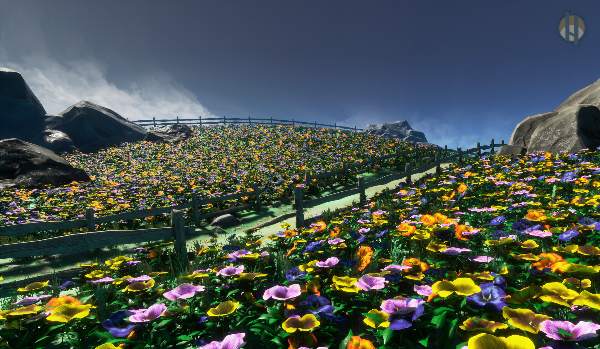 Justin hrala pansy field 01 wide