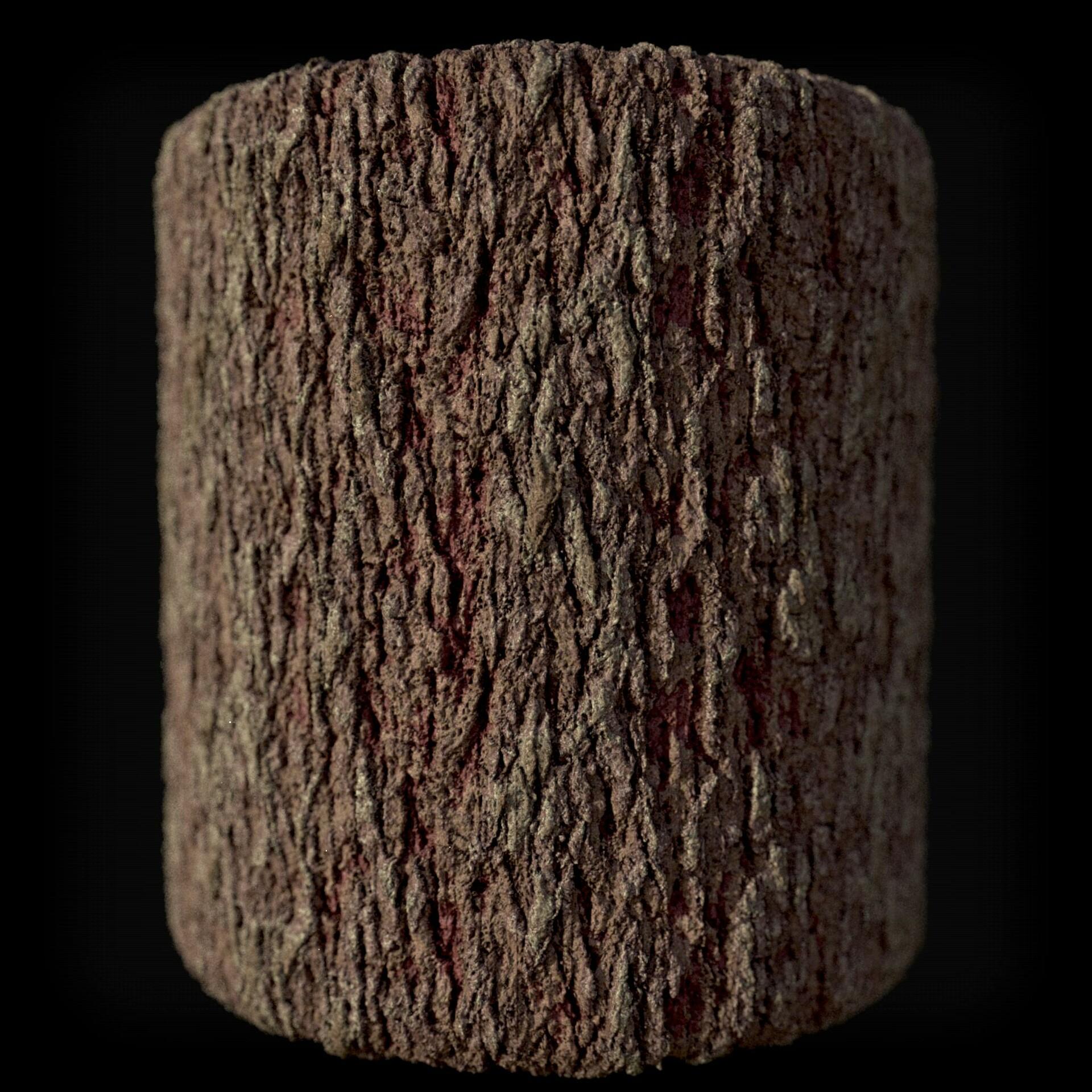Heather dove old bark render v2
