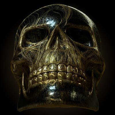 Yannick puggioni skull 02 01 00000